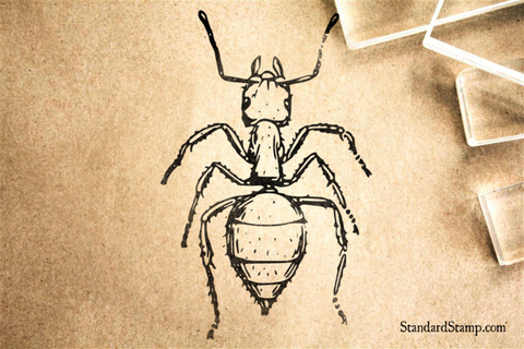 Ant Realistic Rubber Stamp