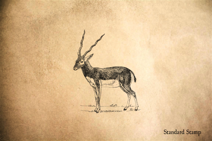 Antelope Rubber Stamp
