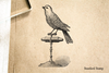 Antique Bird on Stand Rubber Stamp