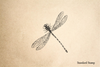 Antique Dragonfly Rubber Stamp