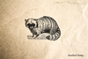 Antique Raccoon Rubber Stamp