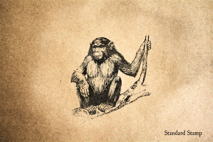 Ape Rubber Stamp