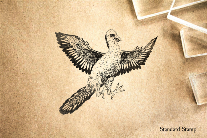 Archaeopteryx Rubber Stamp