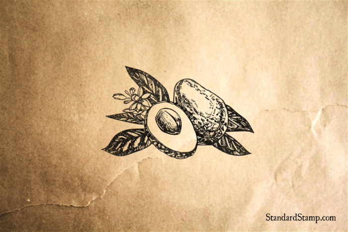 Avocado with Leaves Rubber Stamp