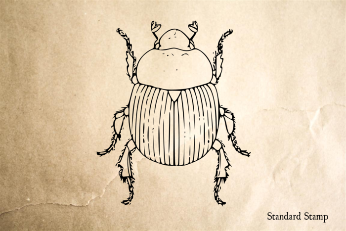 Beetle Rubber Stamp