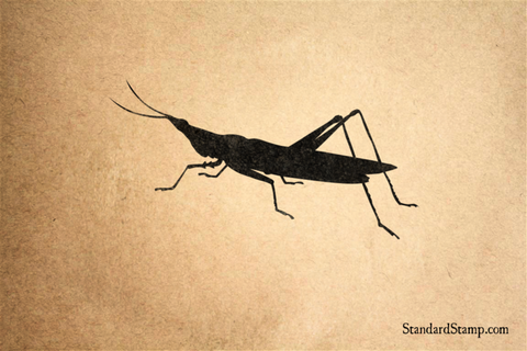 Big Grasshopper Rubber Stamp