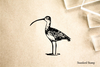 Ibis Rubber Stamp