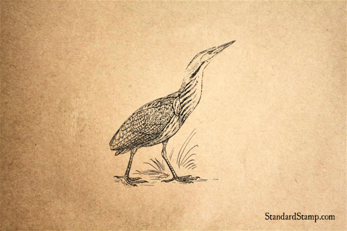 Bittern Rubber Stamp