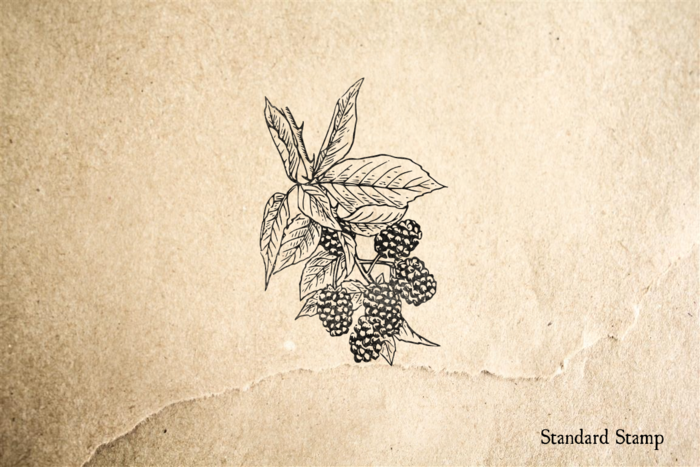 Blackberries Rubber Stamp