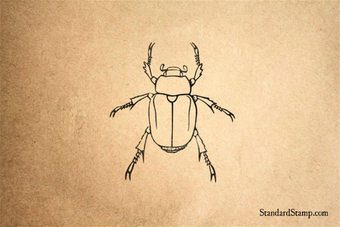 Bold Beetle Rubber Stamp