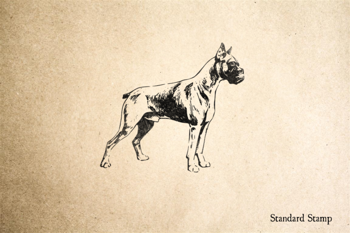 Boxer Rubber Stamp