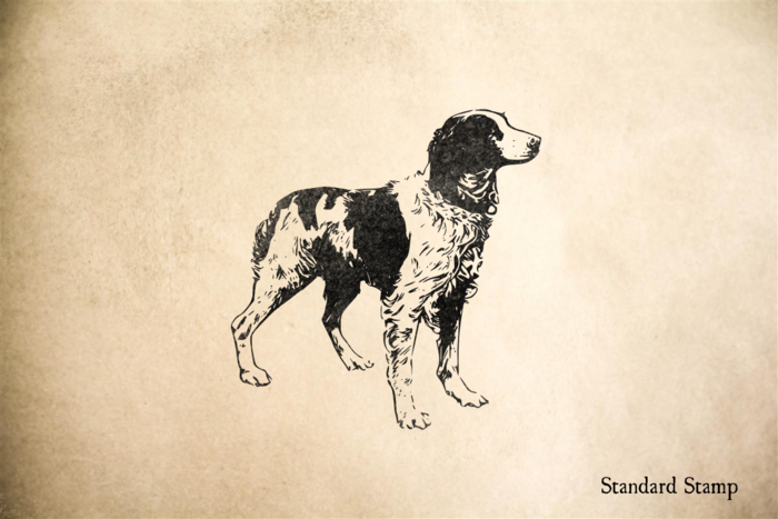 Brittany Spaniel Rubber Stamp
