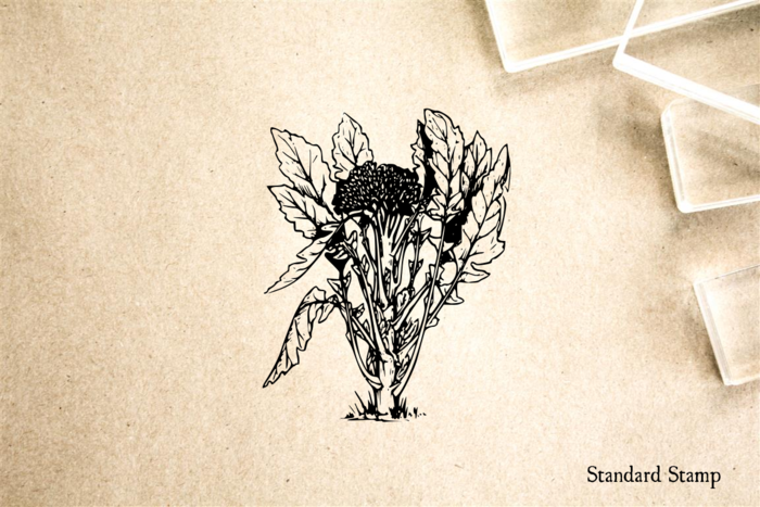 Broccoli Rubber Stamp