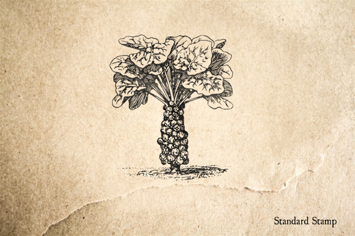Brussel Sprouts with Leaves Rubber Stamp