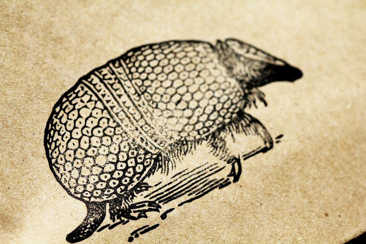 Armadillo Rubber Stamp - 2x3 Inches