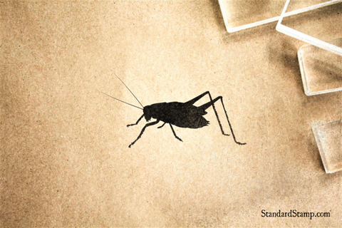Cave Cricket Rubber Stamp