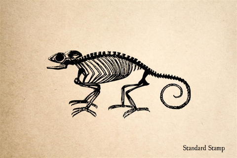 Chameleon Skeleton Rubber Stamp
