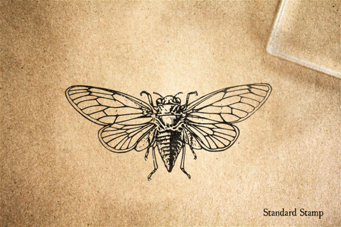 Cicada Rubber Stamp