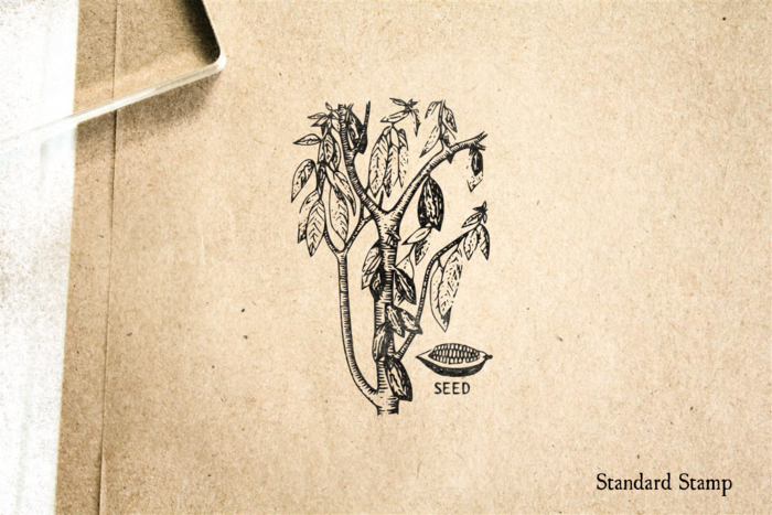 Cocoa Plant with Leaves and Seed Rubber Stamp