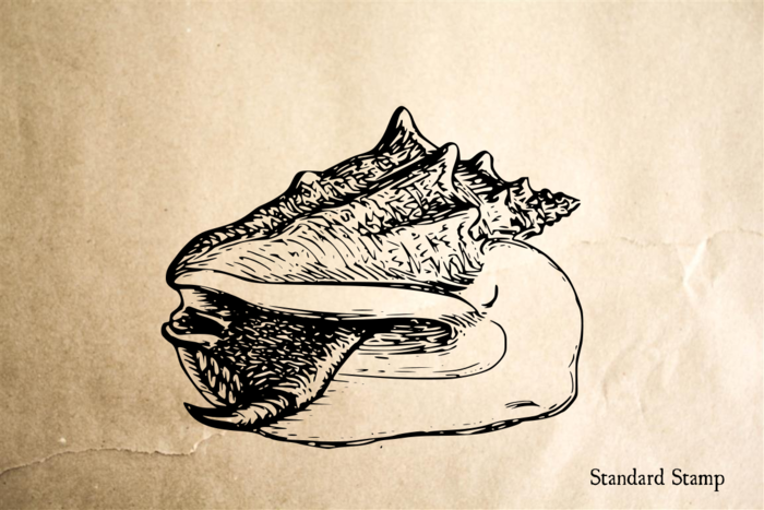 Conch Rubber Stamp