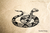 Copperhead Rubber Stamp