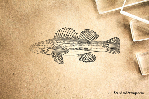 Darter Fish Rubber Stamp