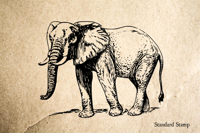 Big Elephant Rubber Stamp