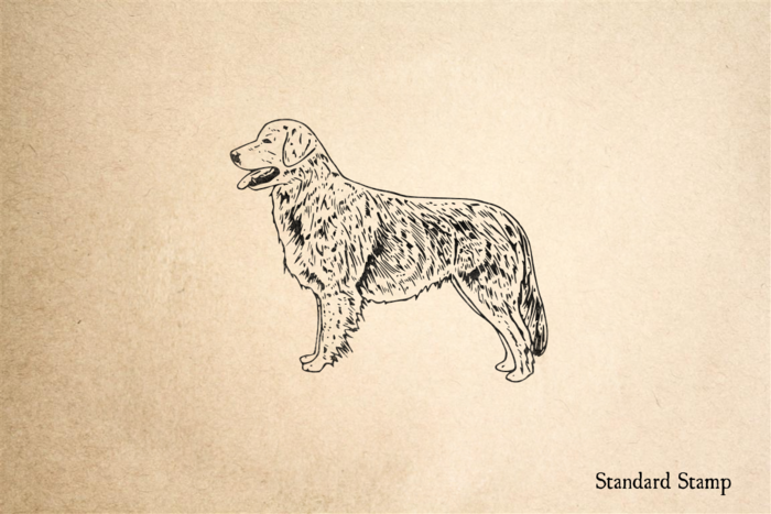 Golden Retriever Rubber Stamp