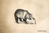 Grizzly Rubber Stamp