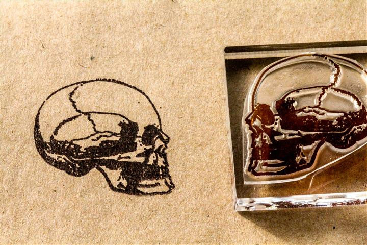 Human Skull Profile View 2 x 2 Inch Stamp