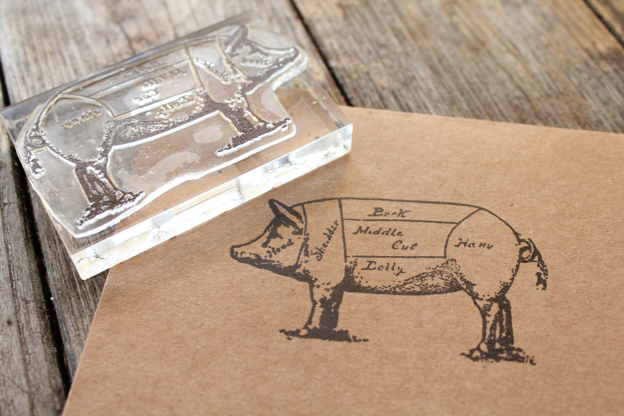 Pig Diagram Rubber Stamp ( 2x3 inches )