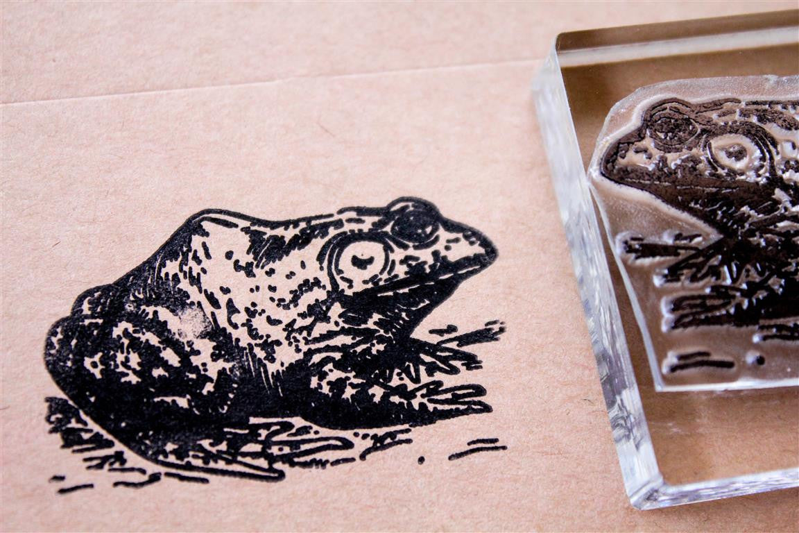 Squatting Frog 2 x 2 Inch Stamp