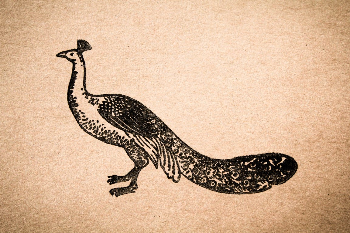 Peacock Resting 2 x 3 Stamp