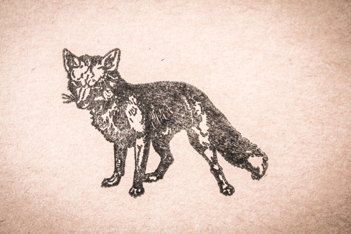 Standing Fox - 3 x 2 Inch Stamp
