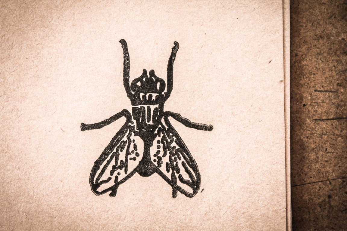 Fly Topview - 2 x 2 Inch Stamp
