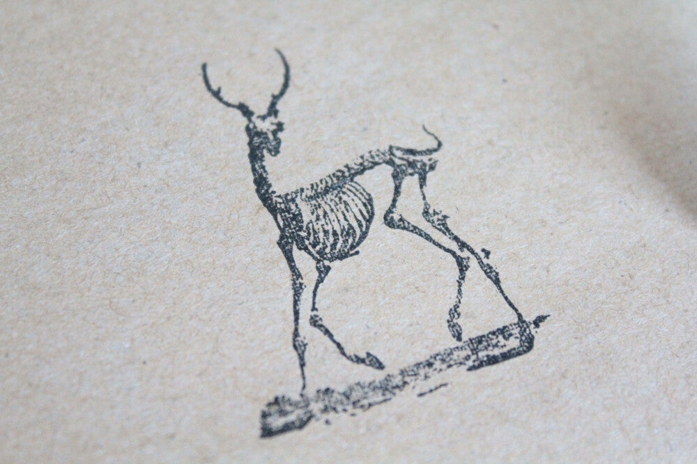 Deer Skeleton 2 x 2 Inch Stamp