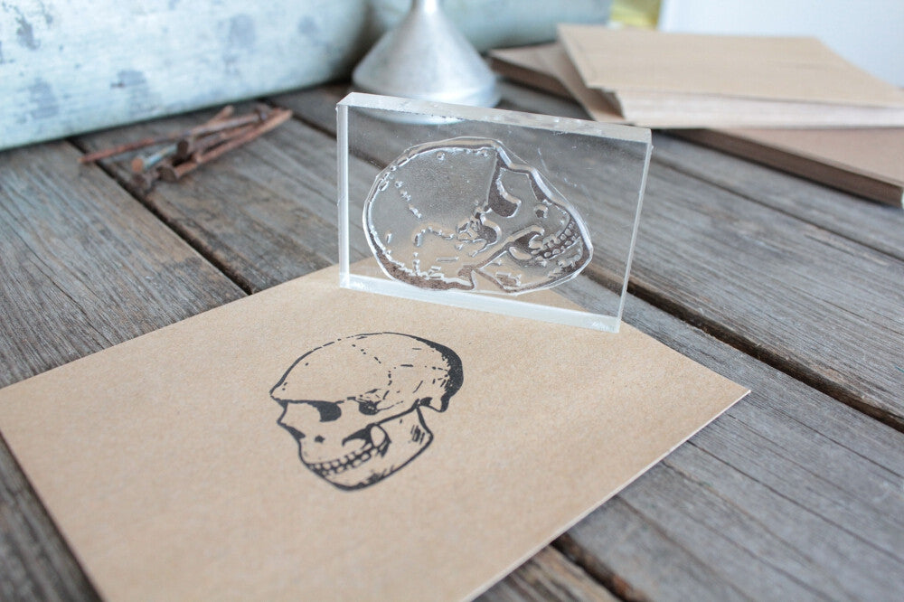 Human Skull, Realistic Side View 2 x 3 Inch Stamp