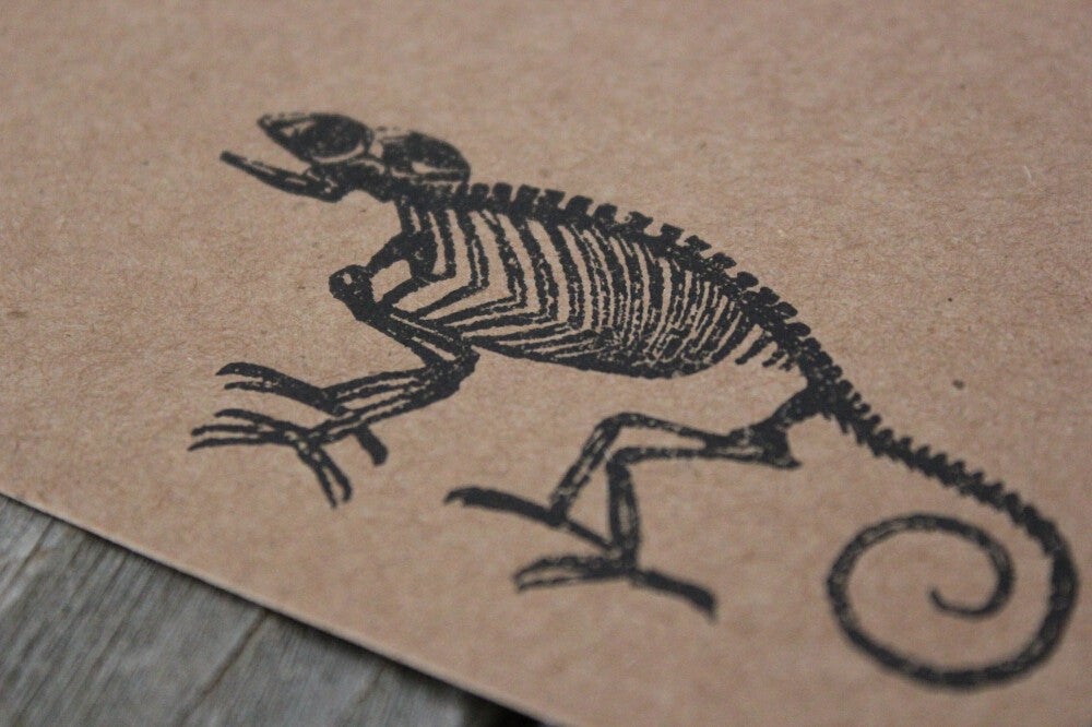 "Chameleon Skeleton 2""x3"" Stamp"