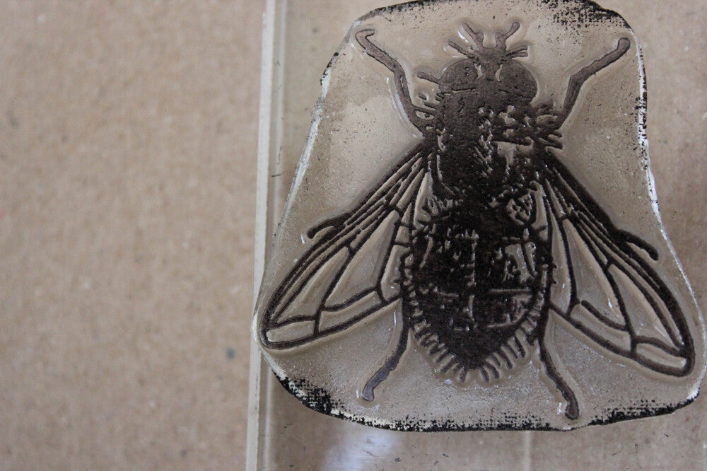 Fly, Realistic, 2 x 2 Inch Stamp