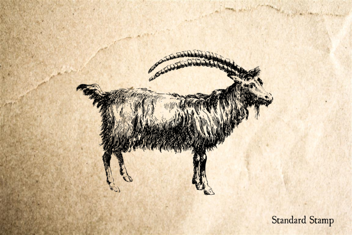 Ibex Rubber Stamp