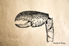 Lobster Claw Rubber Stamp