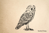 Grey Owl Rubber Stamp