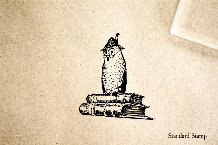 Wise Owl on Books Rubber Stamp