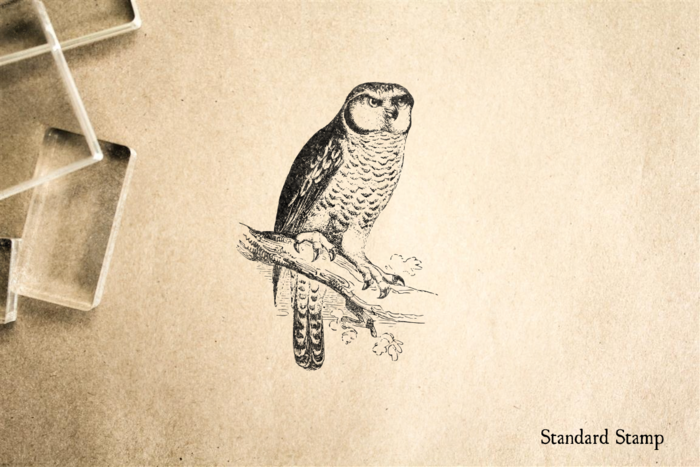 Owl on Branch Rubber Stamp