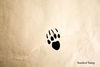 Paw Print 3 Rubber Stamp