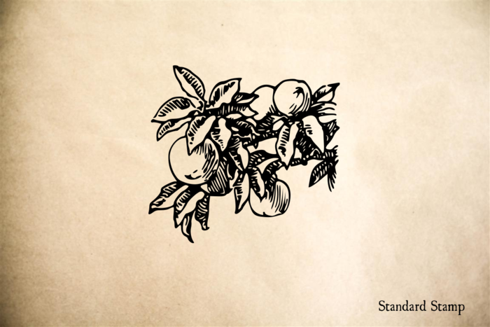 Peaches on Branch Rubber Stamp