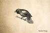 Raven Rubber Stamp