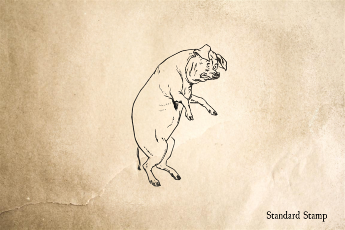 Scared Pig Walking Rubber Stamp