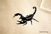 Scorpian Rubber Stamp