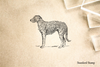 Scottish Deerhound Rubber Stamp